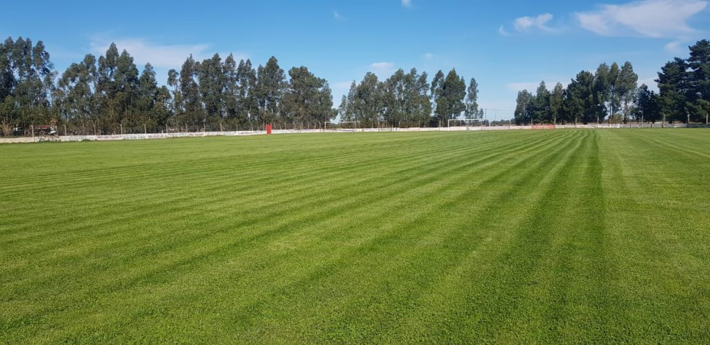 Independiente Lobería
